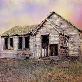 Weathered Barn by Terry Davis
