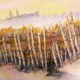 Weathered Fence by Carolyn Rosenberger