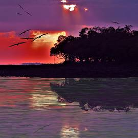 Weipa Sunset With Frigate Birds by Joan Stratton