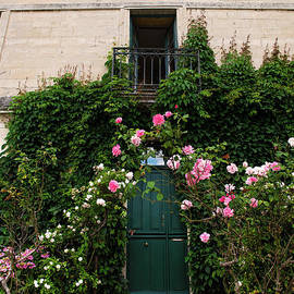 Welcoming Roses in a French Village by Jackie Follett
