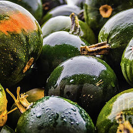 Wet green pumpkins by Lyl Dil Creations