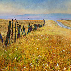 Wet Road Way Out West by R christopher Vest