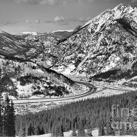 Wheeler Junction Through The Pines Black And White by Adam Jewell