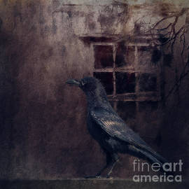 Where Crows Go At Night by Flo Photography