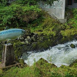 Where the Salmon Run by Ernie Echols