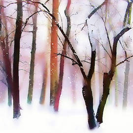Whimsical Winter with Snow by Jessica Jenney