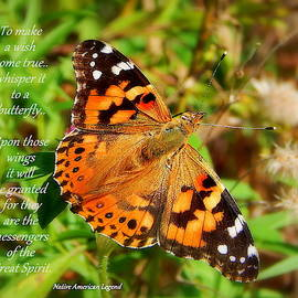 Whisper it to a butterfly by Karen Cook