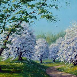White Blossoms by Rick Hansen
