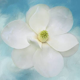Isabela and Skender Cocoli - Southern Magnolia on Blue 2