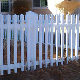 White Picket Fence by Ann Powell