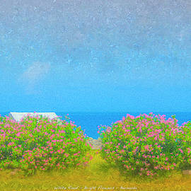 White Roof - Bright Flowers - Bermuda by Bill McEntee