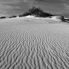 White Sands New Mexico Waves In Black And White by Chance Kafka