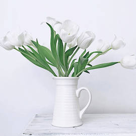 White Tulip Love by Kim Hojnacki