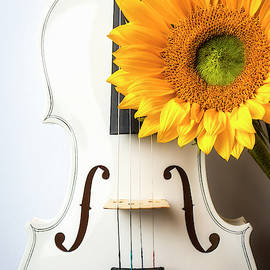 White Violin And Sunflower by Garry Gay