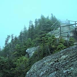 Whiteface Peak by Rose Wark