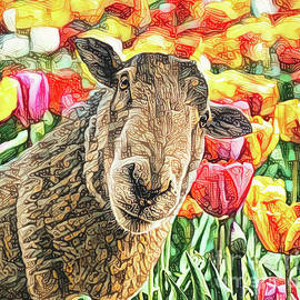 Who Ewe Looking At by Tina LeCour
