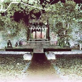 Wilanow Gardens #3 Inverted Colors by Slawek Aniol