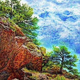 Wild Pine Illumination by Joel Bruce Wallach
