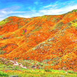 Wild Poppies Near Lake Elsinore by Dominic Piperata