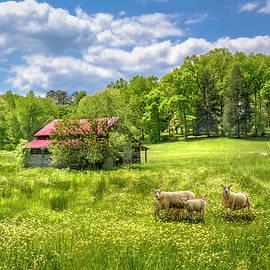 Wildflowers in the Pasture by Debra and Dave Vanderlaan