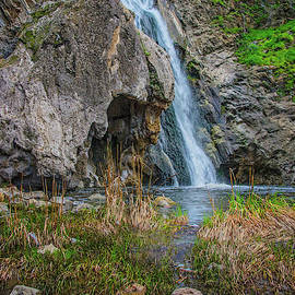 Wildwood's Paradise Falls In Thousand Oaks by Lynn Bauer