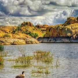 Willow Lake at Prescott Arizona by Priscilla Burgers