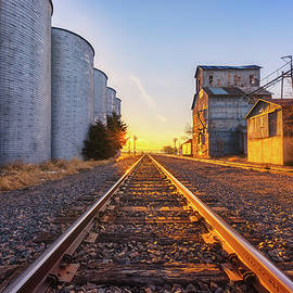 Wilson's Golden Rails by Darren White