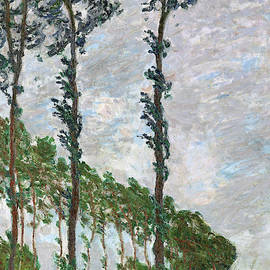 Wind Effect, Series of The Poplars - Digital Remastered Edition