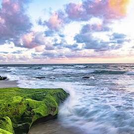Wind N Sea by Local Snaps Photography