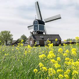 Windmill In The Field by Wolfgang Stocker