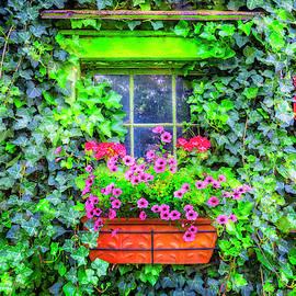 Window in the Ivy by Debra and Dave Vanderlaan