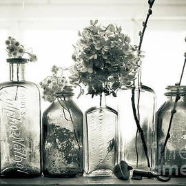 Windowsill Bottles by Alana Ranney