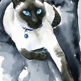 Winnie Siamese Cat  by Dora Hathazi Mendes