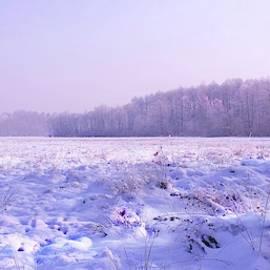 Slawek Aniol - Winter Afternoon #4