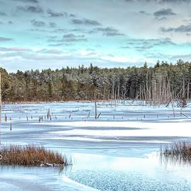Winter At Lake Oswego by Kristia Adams