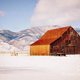 Tru Waters - Winter Barn