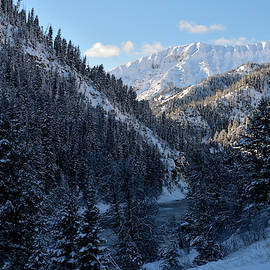 Michael Morse - Winter Canyon