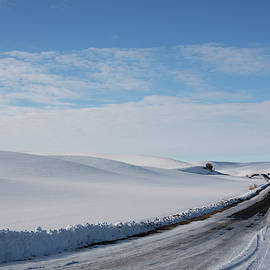 Winter Country Road by Tatiana Travelways