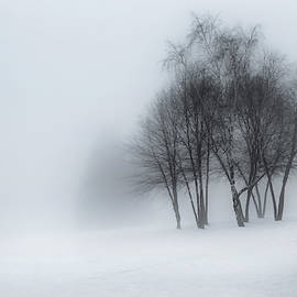 Winter Dream by Bill Wakeley