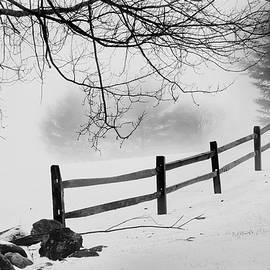 Winter Fence by Bill Wakeley