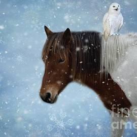Eva Lechner - Winter Fun