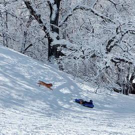Lyuba Filatova - Winter Fun for Children and Pets