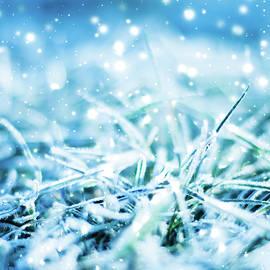 Winter Glow by Anne Leven