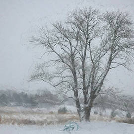 Jeff Oates Photography - Winter is coming