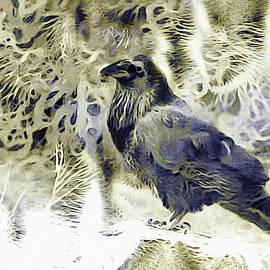 Winter is Coming by Susan Maxwell Schmidt