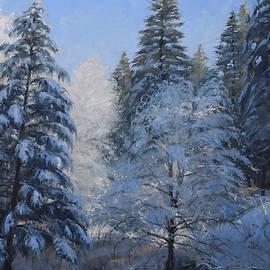 Jeff Troupe - Winter Lace
