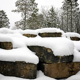 Winter Landscape by Allyson Schwartz