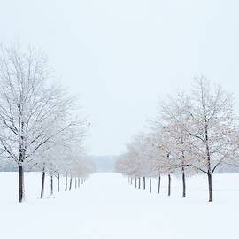 Lori Frisch - Winter Lane
