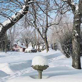 Winter morning in Roundup, Montana  by Tatiana Travelways