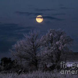 Winter Morning Moon by Kim Lessel